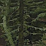 Astrid Nondal: Samtale #4, 2021, 20 x 30 cm