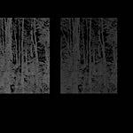 Cameron Martin: inverse 2, 2012, 61 x 46 cm