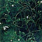 Frank Brunner: Rosebusk I, 2000, 183 x 122 cm