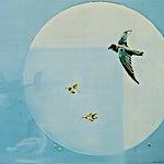Frank Brunner: Montre I, 2001, 79 x 122 cm