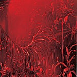 Frank Brunner: And this also... #9, 2002, 108 x 90 cm
