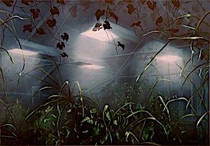 Frank Brunner, House of light C, 2004, 75 x 110 cm