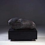 Nico Widerberg: Hestehode, 2001, 80 x 100 cm