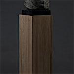 Nicolaus Widerberg: Konkylie, 2012, 43 x 27 cm