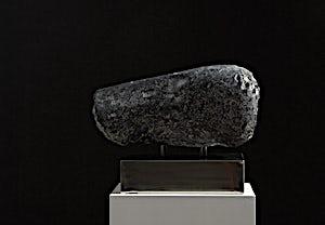 Nico Widerberg, DYR II, 2006, 32 x 43 cm