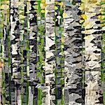 Nini Anker Dessen: Vårflimmer 2, 2007, 150 x 230 cm