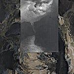 Rina Charlott Lindgren: Shapeshifter, 2017, 64.5 x 42.5 cm