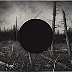 Sverre Malling: Forest, black hole, 2006, 57 x 76 cm