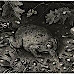 Sverre Malling: Arrangement, (Toad), 2006, 33 x 45 cm