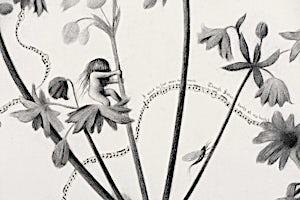 Sverre Malling, The pied piper/rat salad (detalj), 2009, 79 x 297 cm